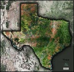 Texas Satellite Image Map