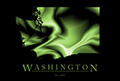 Washington Cool Map Poster
