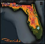 Topographic Physical Wall Map of Florida