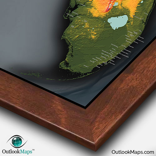 Florida Topography Map Colorful Natural Physical Landscape
