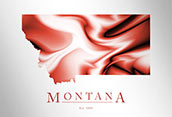 Artistic Poster of Montana Map