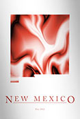 Artistic Poster of New Mexico Map
