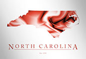 Artistic Poster of North Carolina Map