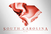 Artistic Poster of South Carolina Map