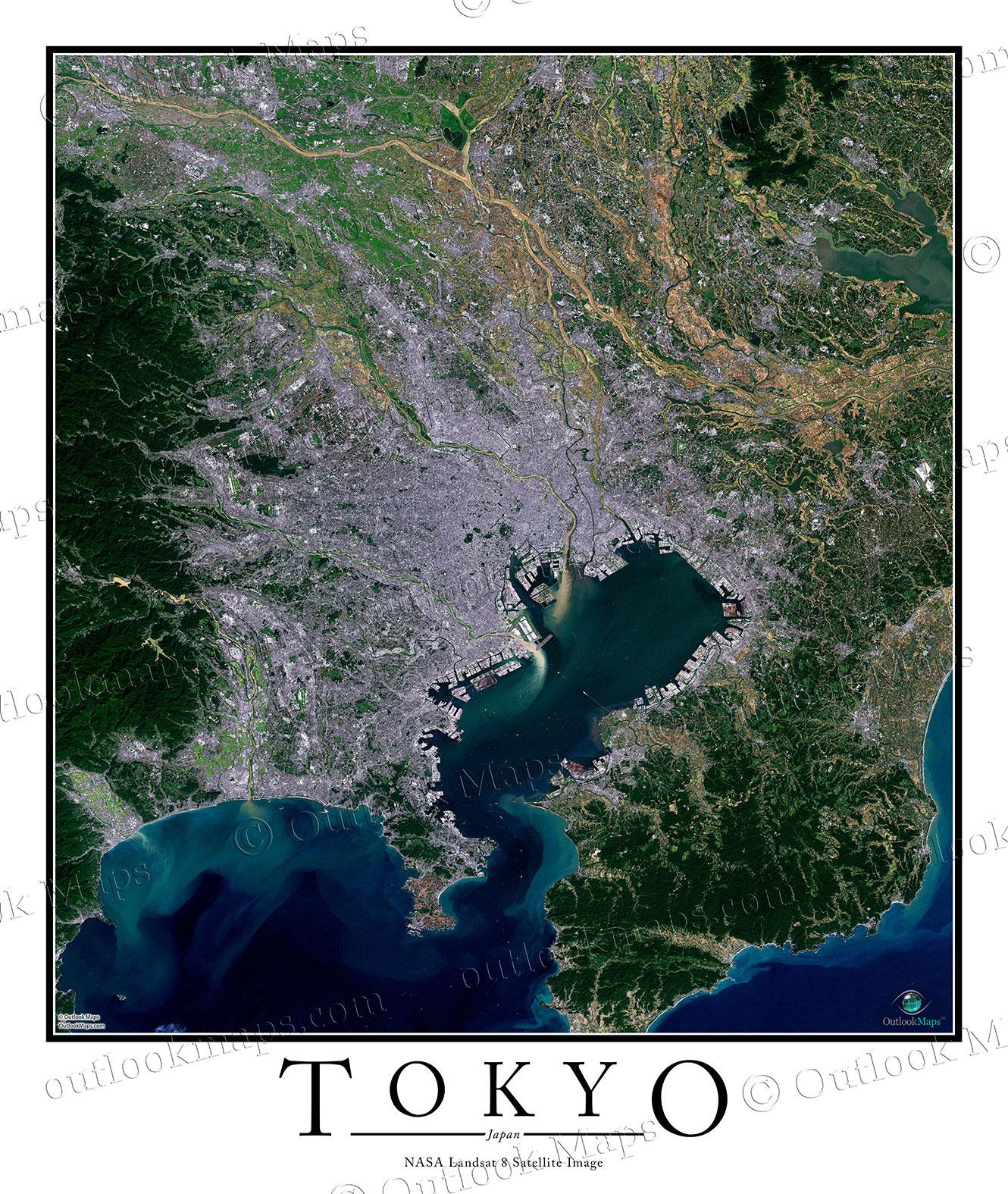 aerial image satellite map of tokyo poster