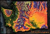 Topographic Physical Wall Map of Washington