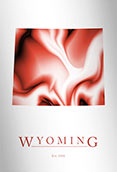 Artistic Poster of Wyoming Map